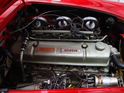 1961 Austin Healey 3000 MK2 BT7 (LHD)